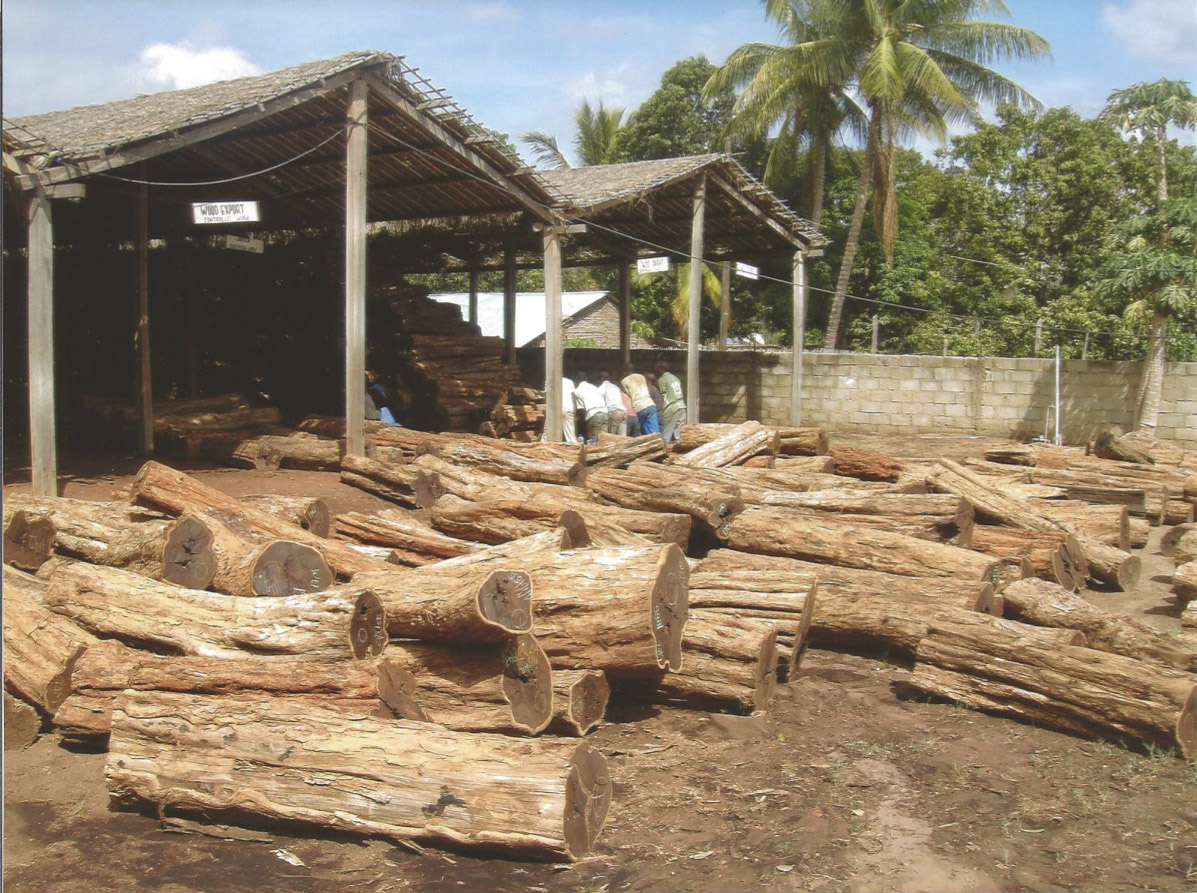 African Blackwood Logs