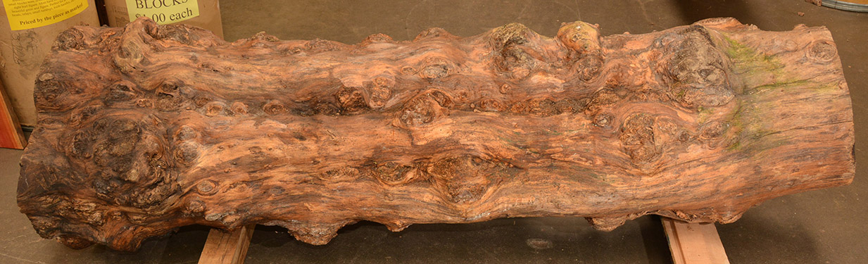 African Blackwood burly log