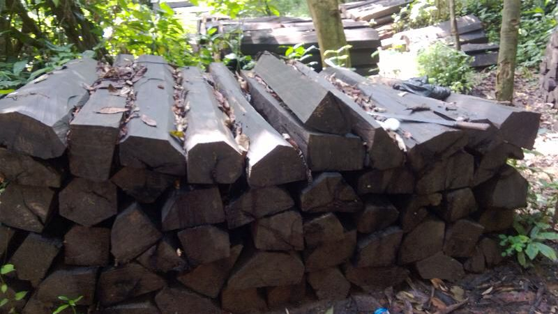 Ebony cants piled up at a loading area in the Nigerian bush
