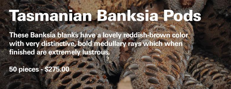 Banksia be3d0a54c608dc4b5d7b4fff56261676b66b83808fd3660037b9b5253f92c844
