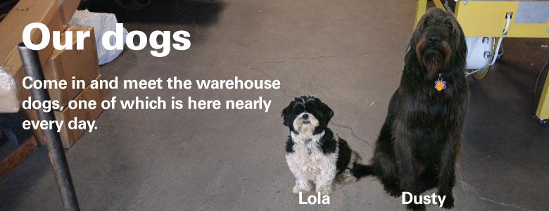 Warehousedogs 194fe0e2ab558e8f004db54d69f9c0db80271e84127c49c45a9c28781fde4c91